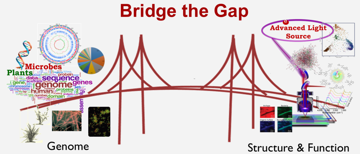 Permalink to: Bridge the gap